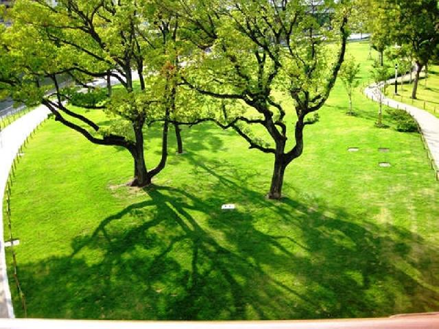 中之島公園(徒歩約10分)